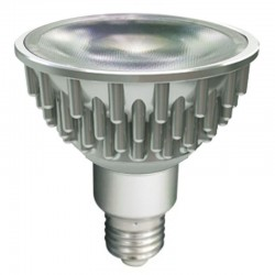 LED Spot PAR38 22 Watt...